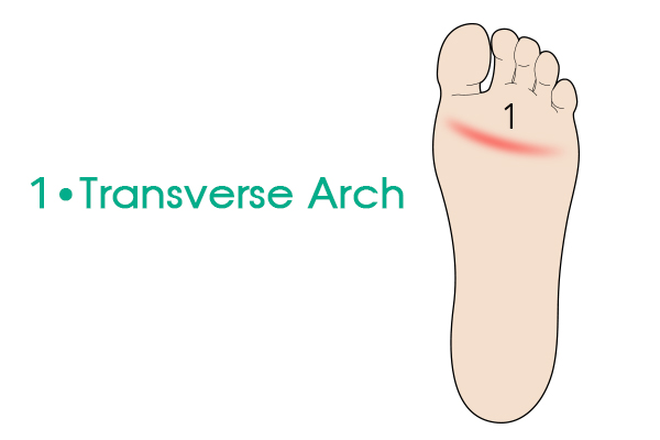 http://dubaipodiatry.com/wp-content/uploads/2019/03/FOOT-ARCHES-SINGLE.jpg