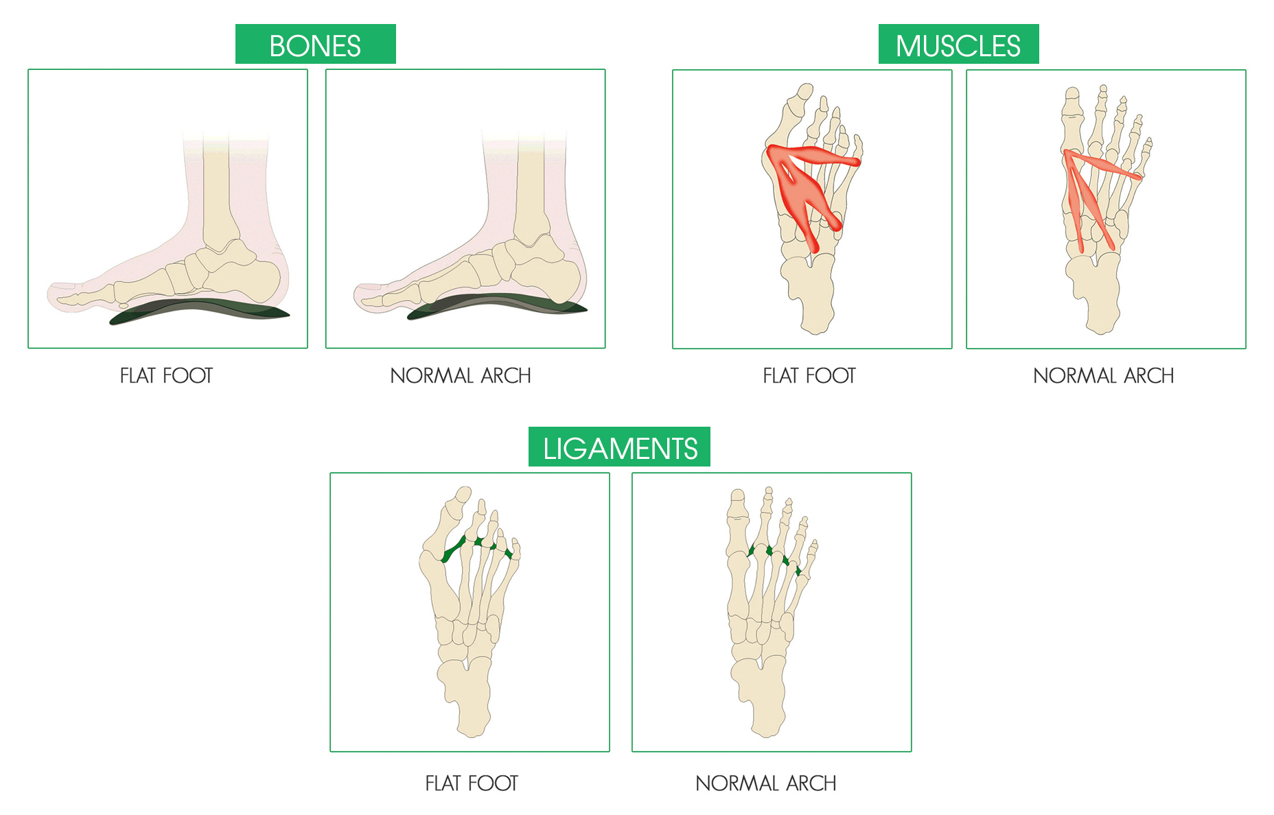 http://dubaipodiatry.com/wp-content/uploads/2019/04/3-STEPS.jpg
